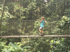 I was so fast on the Treetop Canopy walk in Mulu National Park, Borneo, Malaysia!