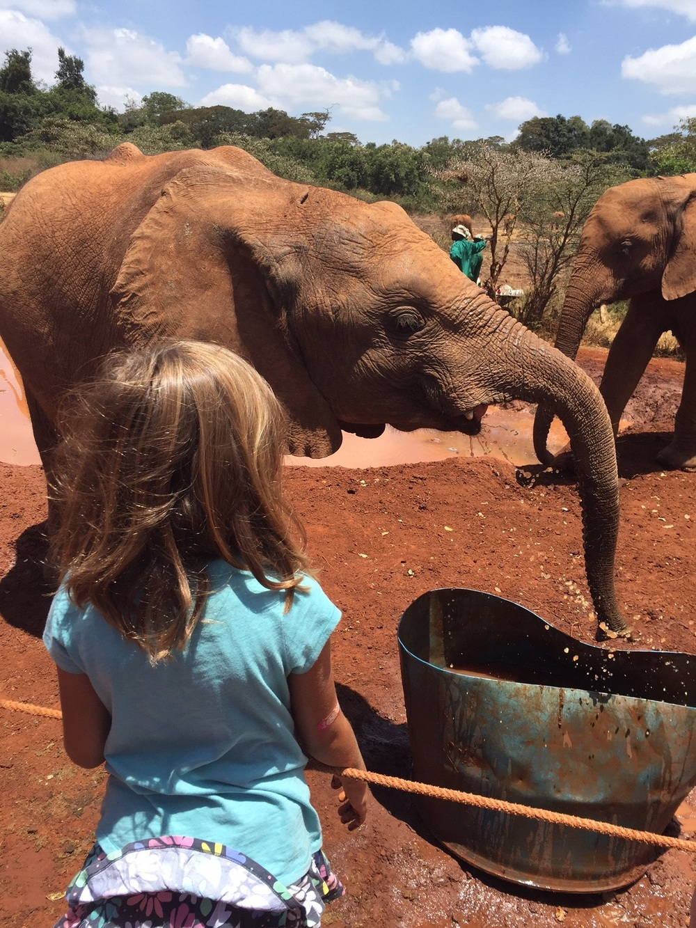 Kenya with Kids: The David Sheldrick Wildlife Trust in Nairobi