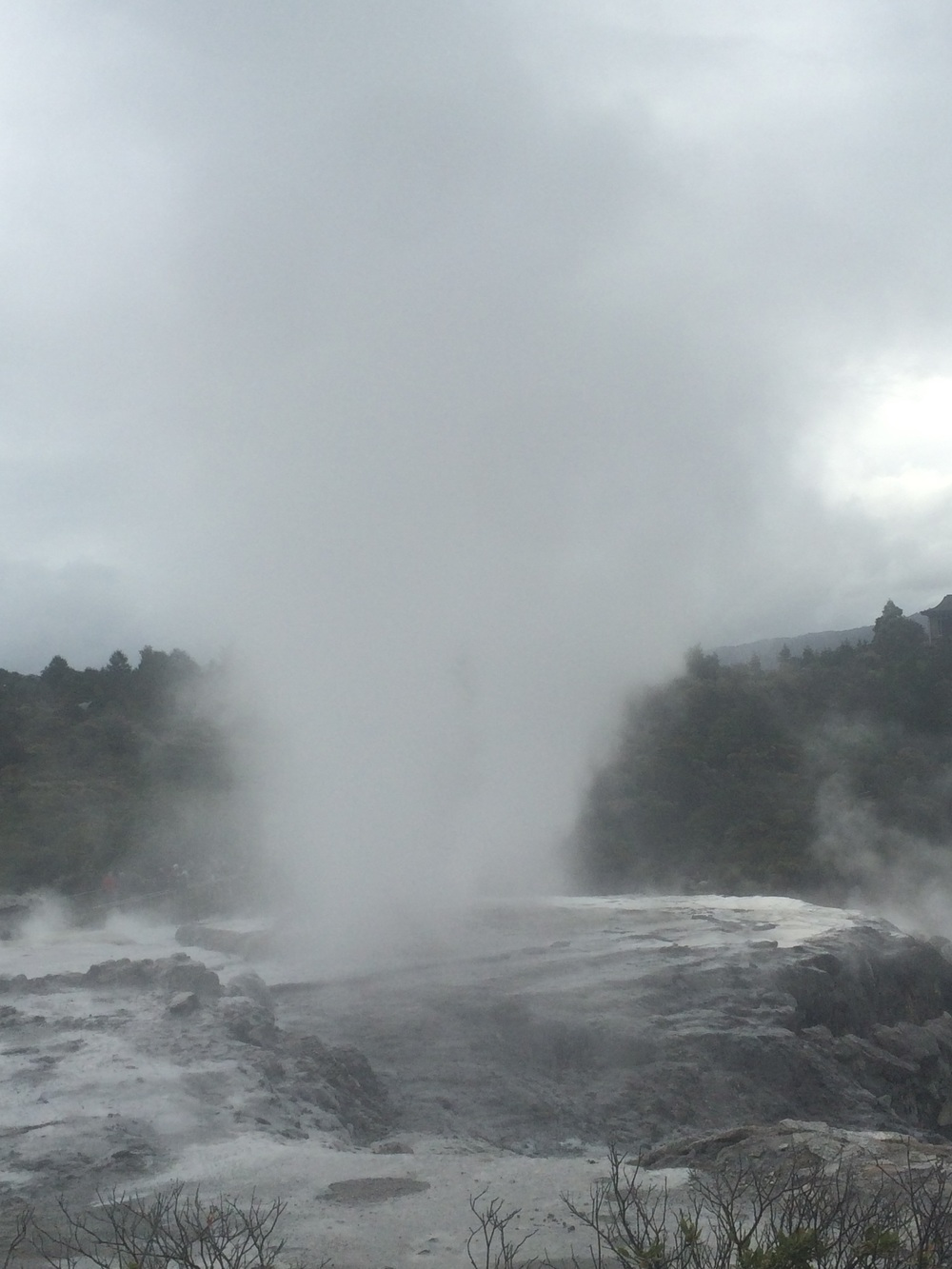Gysers by day....