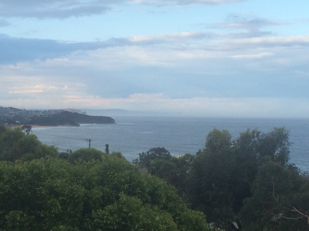 The view from the house we stayed at in Collaroy. We just missed the whale migration.