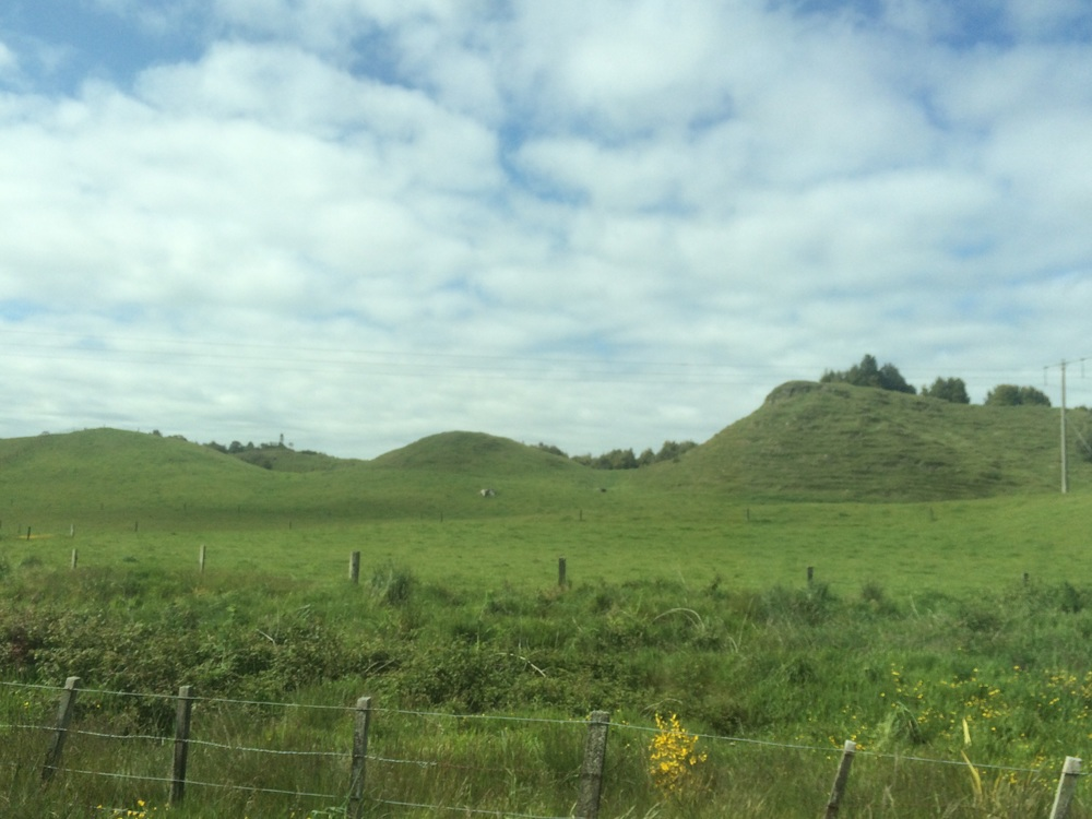 New Zealand countryside driving from Rotorua to Matamata (where The Hobbiton is).