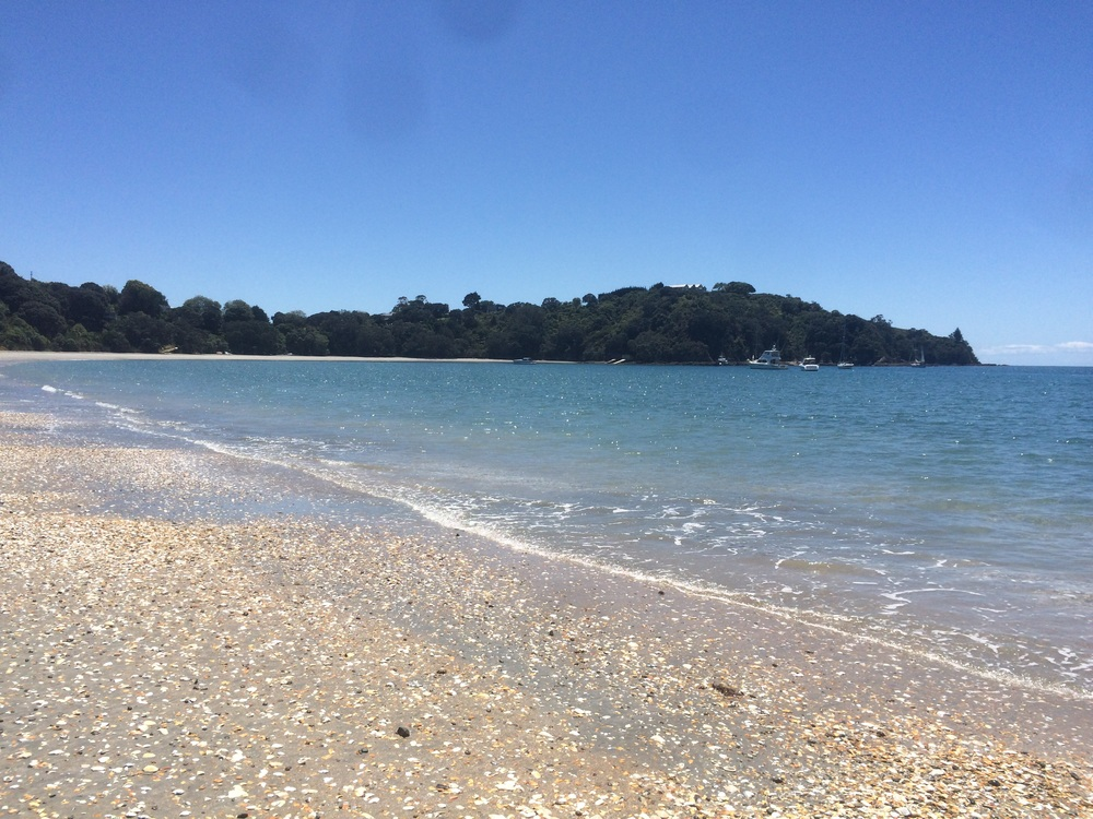 Our last full day in Auckland (Whaiheke Island)...not a cloud in sight!