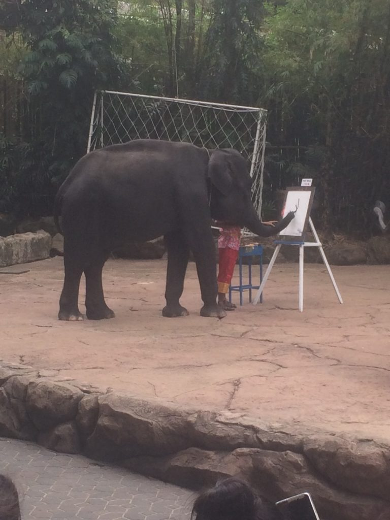 Three Asian elephants demonstrated their painting skills during the elephant show.