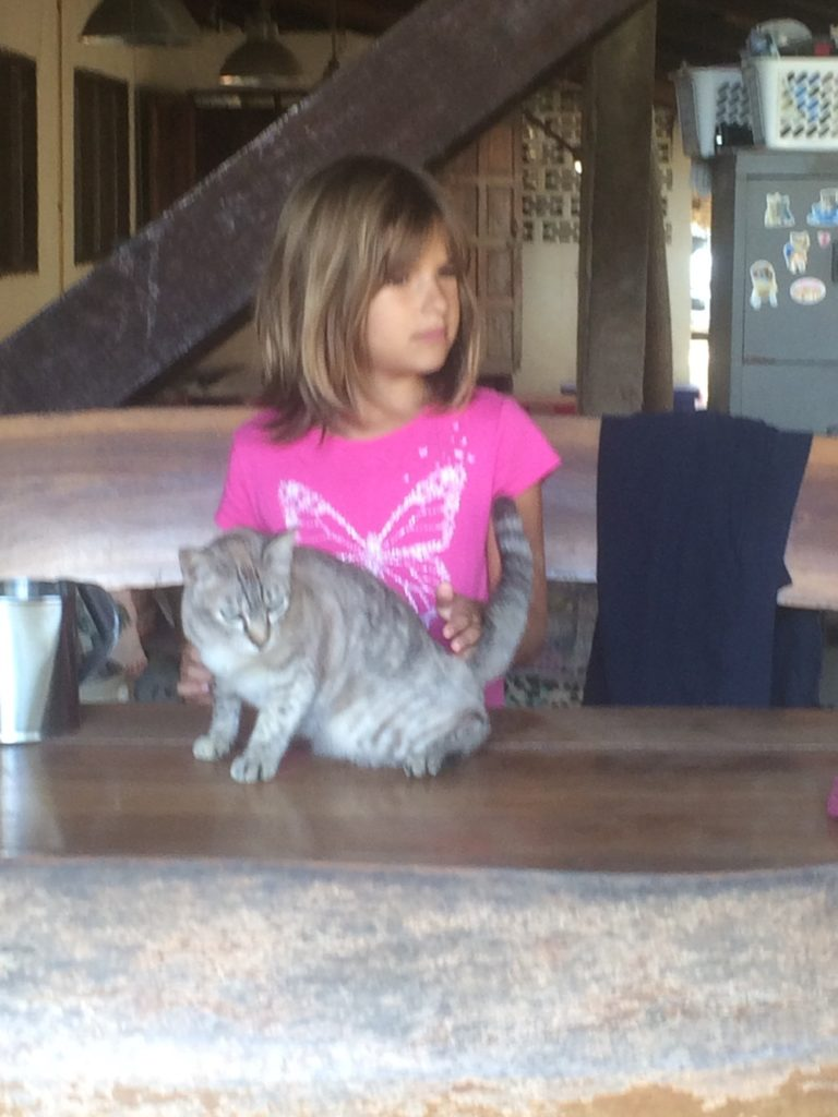 Hannah with one of the cats.