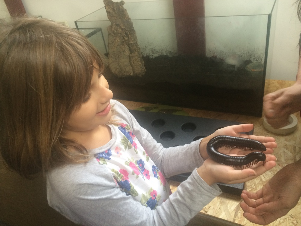 Hannah holding a millipede...Anthony reminded me that she also held one in Africa