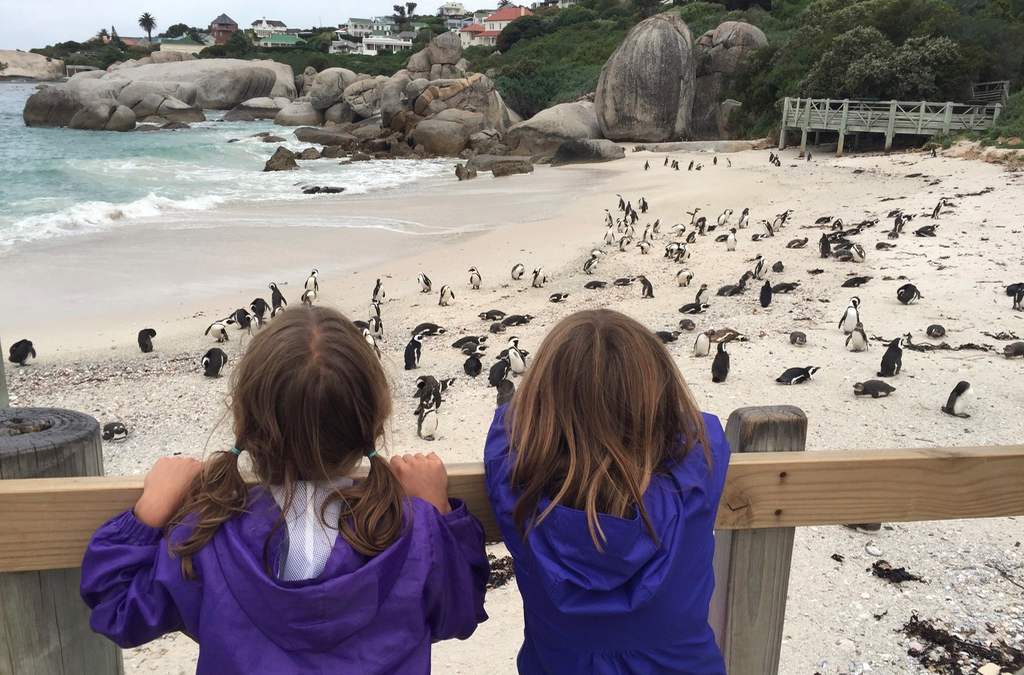 South Africa with Kids: Hermanus, Cape Town, Table Mountain National Park