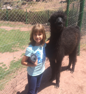 Hannah made a new friend at the animal sanctuary!