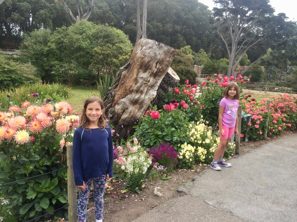 The full name is the San Francisco Zoo & Gardens. You can see why!