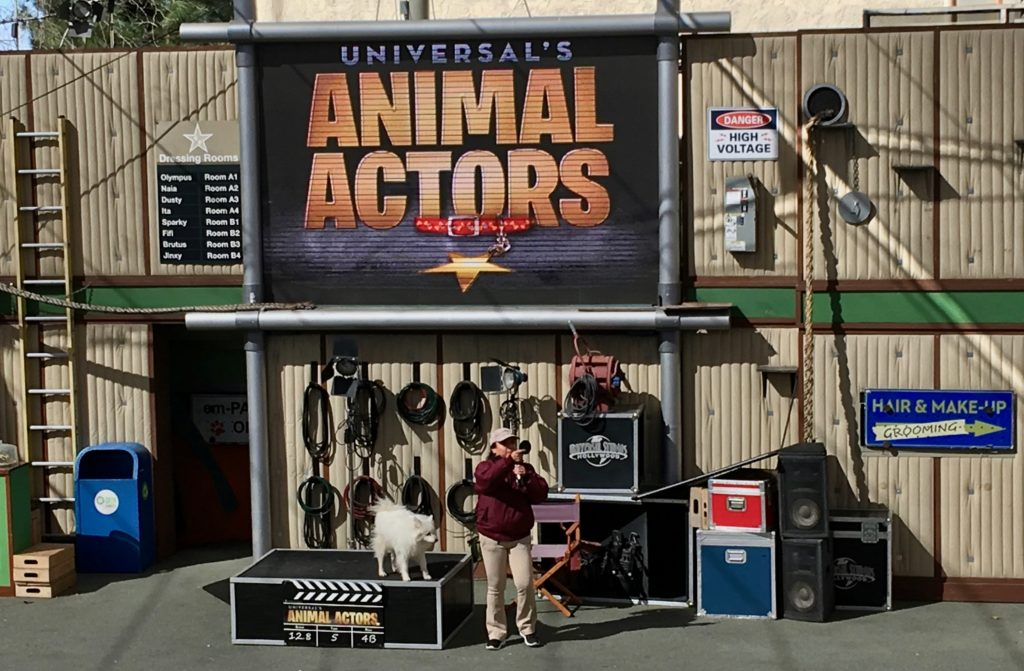 The Animal Actors show
