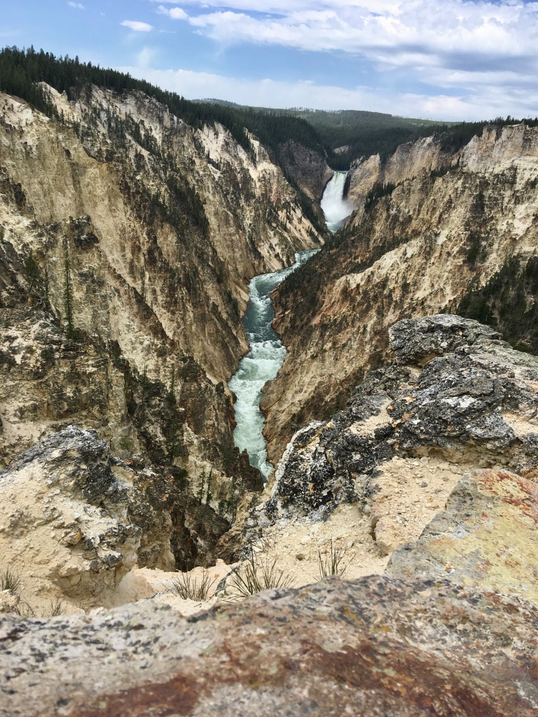 The Grand Canyon of Yellowstone with Lower Yellowstone Falls